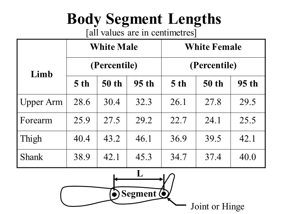 Body Segment Lengths [all values are in centimetres] Limb White Male